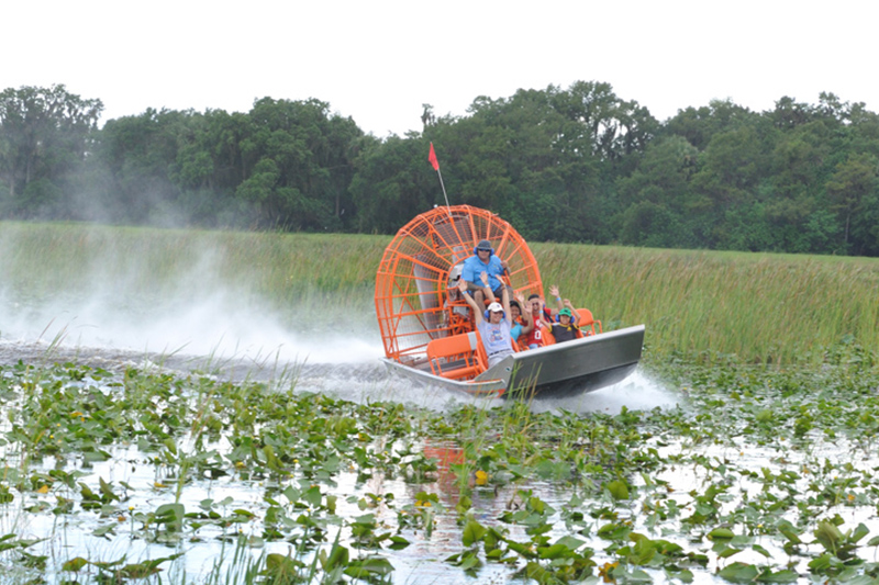 Boggy Creek Airboat Tours Orlando Florida Central Florida Kissimmee gallery images 26