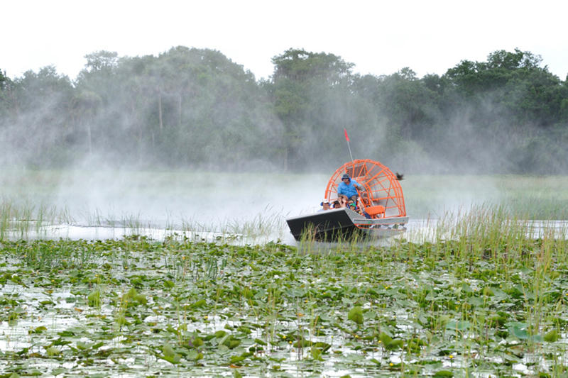 Boggy Creek Airboat Tours Orlando Florida Central Florida Kissimmee gallery images 27