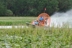 Boggy Creek Airboat Tours Orlando Florida Central Florida Kissimmee gallery images 24